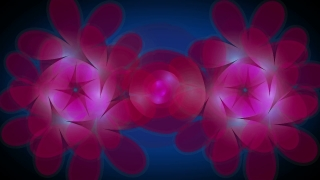 Premium Video Background HD1139
